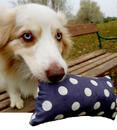 Dog Filou's® Bio Hunde-Wasserspielzeug aus Naturmaterialien