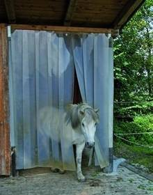 Pferdezubehör: Offenstall mit Lamellenvorhang vor Kälte und Zugluft schützen
